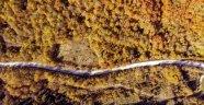 Abant'ta sonbahar güzelliği