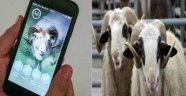 BİLGİLERİ CEP  TELEFONLARINA GELECEK