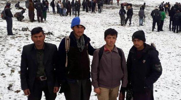 Van'da göçmen kaçakçılı